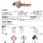 Safety Data Sheet (2015) - Wet_Chinese
